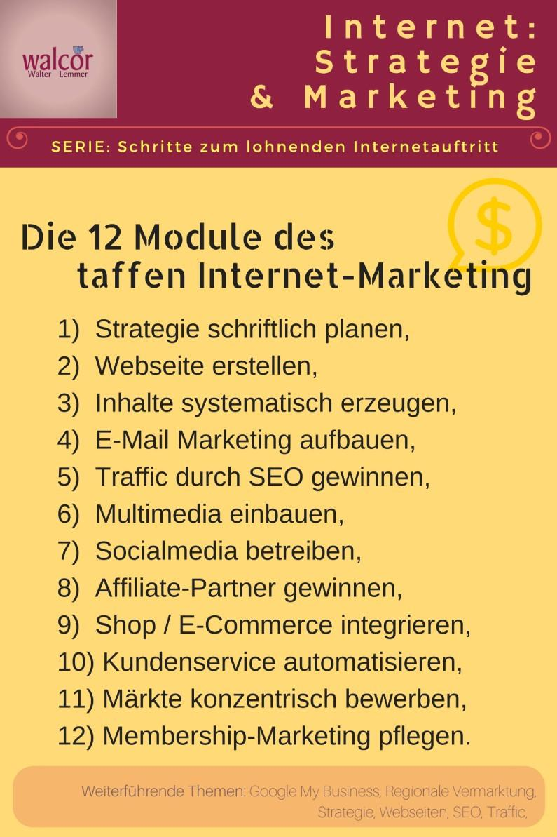 12 module des perfekten Internet-Marketing